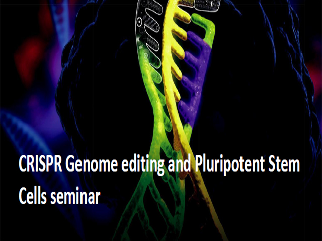 Seminari Genome Editing and Pluripotent Stem Cells